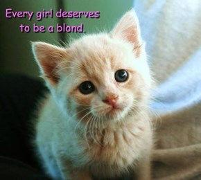 Every girl deserves to be a blond.