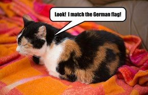 Look!  I match the German flag!