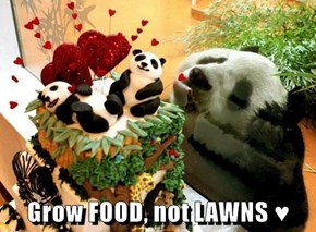 Grow FOOD, not LAWNS ♥