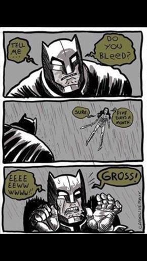 Wonder Woman Teaches Batman Some Facts About Life