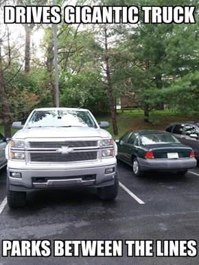 Good Guy Big Truck Driver