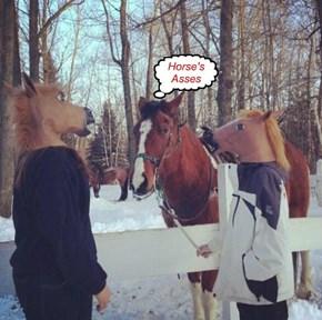 Sraight from da Horse's Yadda Yadda Yadda...