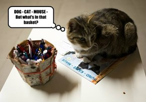DOG - CAT - MOUSE - But what's in that basket?