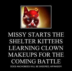 MISSY STARTS THE SHELTER KITTEHS LEARNING CLOWN MAKEUPS FOR THE COMING BATTLE