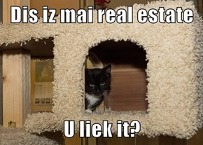 Dis iz mai real estate  U liek it?