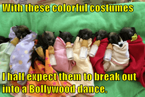 With these colorful costumes  I half expect them to break out into a Bollywood dance.