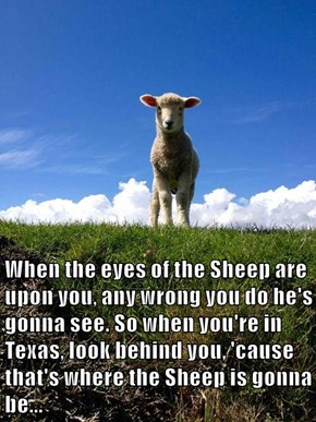 When the eyes of the Sheep are upon you, any wrong you do he's gonna see. So when you're in Texas, look behind you, 'cause that's where the Sheep is gonna be...