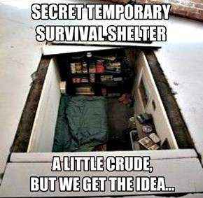 SECRET TEMPORARY  SURVIVAL SHELTER