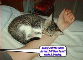 Honey, call the office for me.  Tell them I can't make it in today.