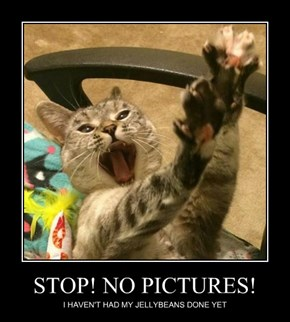 STOP! NO PICTURES!