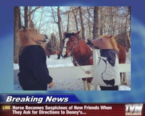 Breaking News - Horse Becomes Suspicious of New Friends When They Ask for Directions to Denny's...
