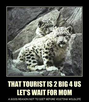 THAT TOURIST IS 2 BIG 4 US LET'S WAIT FOR MOM