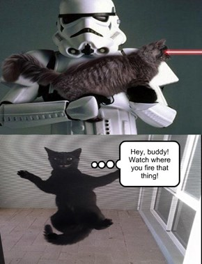 TK-421! Why aren't you scratching your post?