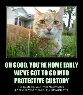 OH GOOD, YOU'RE HOME EARLY WE'VE GOT TO GO INTO  PROTECTIVE CUSTODY