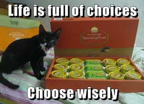 Life is full of choices  Choose wisely