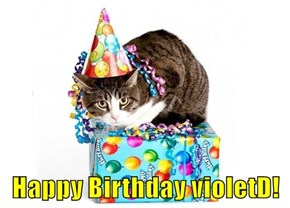 Happy Birthday violetD!