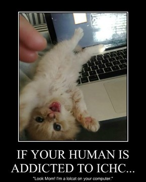 IF YOUR HUMAN IS ADDICTED TO ICHC...