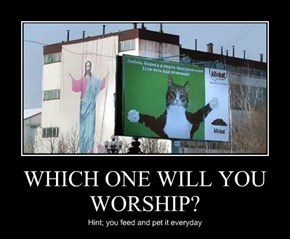 WHICH ONE WILL YOU WORSHIP?