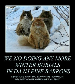 WE NO DOING ANY MORE WINTER BURIALS  IN DA NJ PINE BARRONS