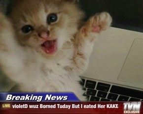 Breaking News - violetD wuz Borned Tuday But I eated Her KAKE