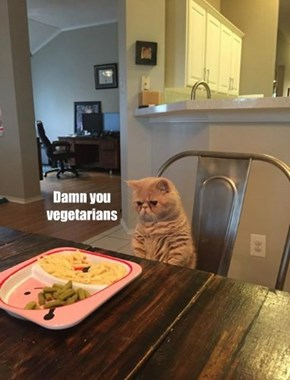 Damn you vegetarians