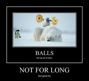 NOT FOR LONG