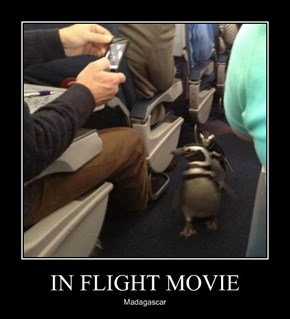 IN FLIGHT MOVIE