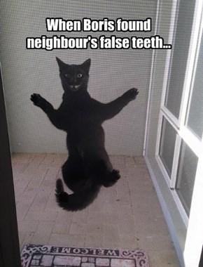 When Boris found neighbour's false teeth...