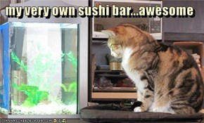 my very own sushi bar...awesome