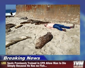 Breaking News - Seals Previously Trained in CPR Allow Man to Die Simply Because He Has no Fish...