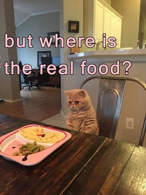 but where is the real food?