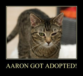 AARON GOT ADOPTED!
