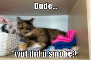 Dude...  wut did u smoke?