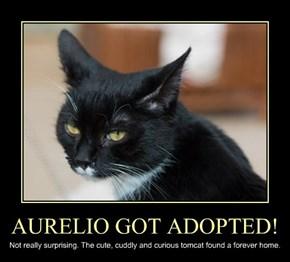 AURELIO GOT ADOPTED!