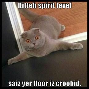 Kitteh spirit level  saiz yer floor iz crookid.