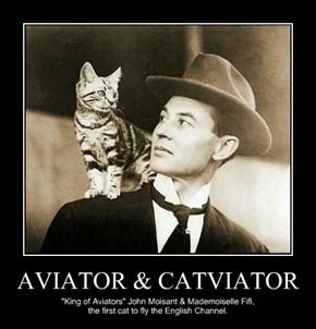 AVIATOR & CATVIATOR