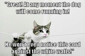 """""""Great! At any moment the dog will come running in!  He won't even notice this cord against the white walls!"""""""