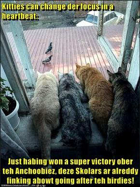 Kitties can change der focus in a heartbeat:  Just habing won a super victory ober teh Anchoobiez, deze Skolars ar alreddy finking abowt going after teh birdies!