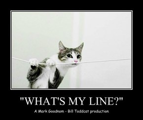 """""""WHAT'S MY LINE?"""""""