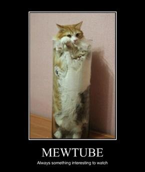 MEWTUBE
