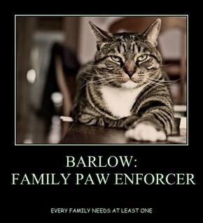 BARLOW:   FAMILY PAW ENFORCER
