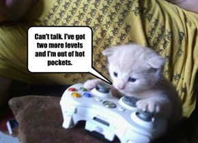 Can't talk. I've got two more levels and I'm out of hot pockets.