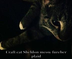 Craft cat Sheldon meow fureber plaid