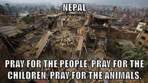 NEPAL   PRAY FOR THE PEOPLE, PRAY FOR THE CHILDREN, PRAY FOR THE ANIMALS.