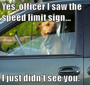Yes, officer I saw the speed limit sign...  I just didn't see you.