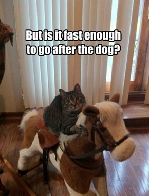 But is it fast enough to go after the dog?