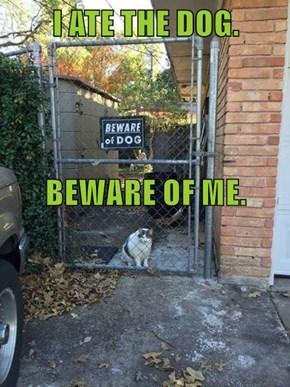 I ATE THE DOG. BEWARE OF ME.