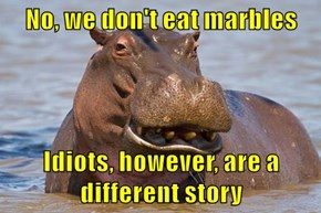 No, we don't eat marbles  Idiots, however, are a different story