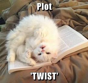Plot  'TWIST'