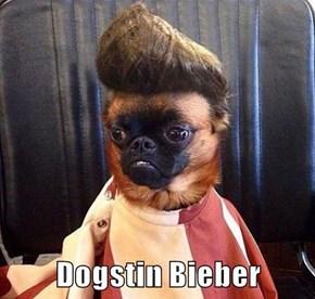 Dogstin Bieber